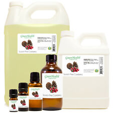 Scotch Pine Cranberry Fragrance Oil  - Choose Size - Free Shipping