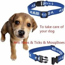 Adjustable Effective Anti Fleas Ticks Mosquitoes Pet Collar For Big Dogs Cats