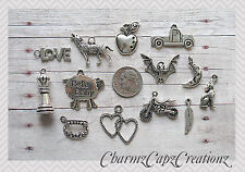 13 pc Silver Twilight Inspired Charm Pendant Lot Set Collection / Wolf Vampire
