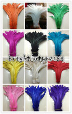 Wholesale 10-200pcs rooster tail feathers 10-12 inches / 25-30 cm decoration hot