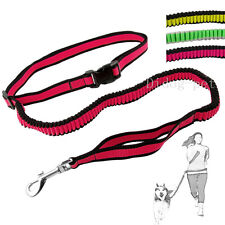 Hand Free Dog Training Leash Running Bungee Elastic Dog Lead with Waist Belt