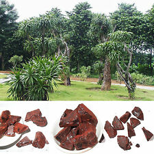 5oz Dragon's Blood Resin Incense 5oz 100% Natural Wild Harvested w/charcoal w