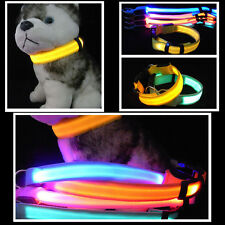 Hot LED Dog Night Safety Pet Flashing Light Adjustable Cat Nylon Collar Leash