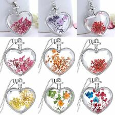 Chic Heart Glass Locket Pendant Real Dried Pressed Flower Long Chain Necklace