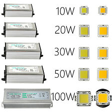 10W 20W 30W 50W 100W Led Chip , Led Driver , For Outdoor Flood Lights Bright