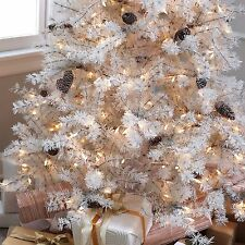 7 ft. Sage Frosted Hard Needle Pre-lit Christmas Tree