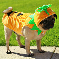 Dog Pumpkin Costume Small to Large Dog Breeds - Quality Dog Fancy Dress Outfit.