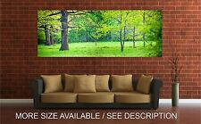 Wall Art Canvas Print Picture Green Forest Panoramic Landscape -Unframed