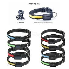 Rechargeable USB / Solar LED Flashing Light Band Belt Safety Pet Dog Collar