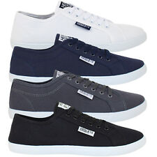 Mens Voi Jeans Pumps Canvas Lace Up Casual Designer Shoes Trainers Plimsoles