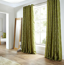 Pair of  Lime Green Midtown Embroidered Faux Silk Fully Lined Eyelet Curtains