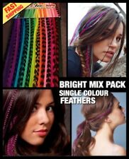 """Feather Hair Extensions Real Feathers BRIGHT MIX 20pc 5FREE XL - XXL Long 10-13"""""""