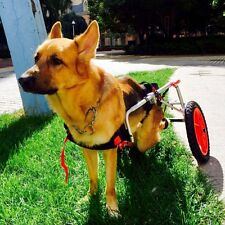 Main Puppy Dog Walking Wheels W78t Cat Mobility Wheelchair Cart For Handicap Pet