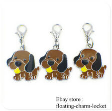 Brown Dog Prints Clip with Lobster Clasp Key Chain Keyring Pendant Dangle charms