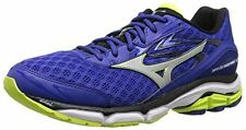 Mizuno Men's Wave Inspire 12 Running Shoe, Surf The Web/Silver