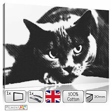 LARGE BLACK AND WHITE CAT ABSTRACT - STRETCHED CANVAS WALL ART PRINTS PICTURES