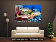 Wall Art Canvas Print Picture Beautiful Tropical Sea Nice Fish-Unframed