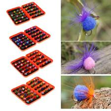 40Pcs Fly Fishing Flies Assorted Trout Carp Fishing Lures Dry Flies with Box