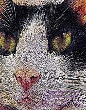 """""""Mr Z Cat"""" Art Photo of a Very Cool Cat, Digital Images by Email, or REAL Prints"""
