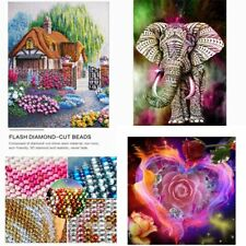 5D Diamond Embroidery Painting Cross Stitch Painting Craft DIY Art Home Decor