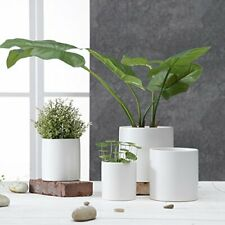 Ceramic Pots for Plants with Drainage