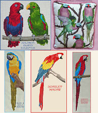 PARROT, PARAKEET, ECLECTUS COUNTED CROSS STITCH PATTERN