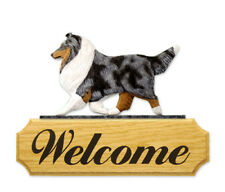 SHELTIE IN GAIT  WELCOME SIGN *CHOICE SABLE, TRI. MERLE