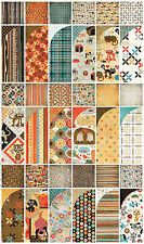 BasicGrey MAX & WHISKERS 12x12 TWO Scrapbooking Papers-U CHOOSE DESIGN