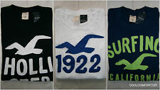 NWT Hollister Little Dume Long Sleeve T Shirt Tee Mens Muscle Fit By Abercrombie