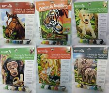 Reeves Acrylic Paint By Numbers, Painting Kits With Instructions