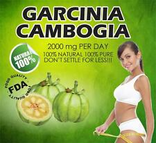 Garcinia Cambogia Extract 100% Pure Natural 62.1% HCA  2000mg Daily Weight Loss