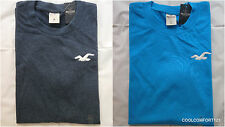 NWT Hollister Seagull T Shirt Mens Muscle Fit Size M&L&XL By Abercrombie