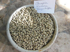 Green Coffee Beans Sampler 1 Pound Each Choose from 30 Gourmet Varieties
