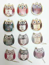 Shabby Chic Metal Hanging Mini Owl Decoration Sign Owls
