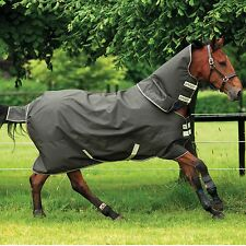 Amigo XL Horseware Medium Turnout Blanket -Green/Otter- Size: 87- Draft - SALE!
