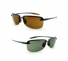 BIFOCAL SUNGLASSES FOR FISHING OR READING - COUGARS