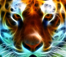 Abstract Tiger Face Canvas Print - Choose your Size