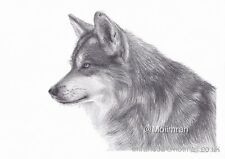 A4 Hand Drawn Pencil Drawing From Photographs, Personalised Artist Pet Portrait