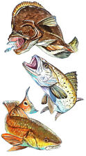Red Drum Trout and Flounder Fish Vinyl Decal - Car Home Truck SUV Boat RV