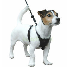 Dog Halter Harness Large Dog Stop-Pulling Instantly Mesh Vest NO CHOKING XS to L