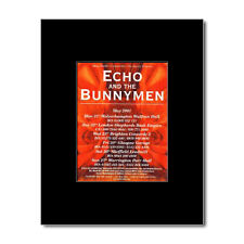 ECHO AND THE BUNNYMEN - UK Tour 2001 Matted Mini Poster