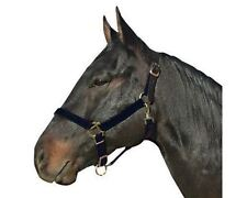 Intrepid Break Away Nylon Halter w/Leather Crown - Safety - Diff Sizes & Colors