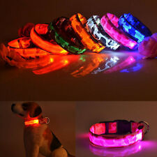 Adjustable Pet Dog Nylon Safety Collar Light Up for Flashing Night LED Light