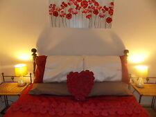 LAST MINUTE ROMANTIC GETAWAY AUGUST HOLIDAY COTTAGE LET SNOWDONIA NORTH WALES