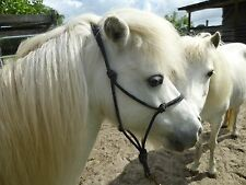 "Miniature Horse ADULT size 1/4"" Rope Halter"