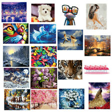 DIY Paint By Numbers Kit Oil Painting with Acrylic on Canvas Artwork Oil Picture