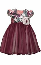 Bonnie Baby Baby Girls Floral Tulle Party Dress - Baby Girl Holiday Dress