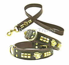 ENGLISH BULL TERRIER LEATHER DOG COLLAR AND LEAD SET BROWN BRASS PADDED