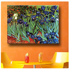 Huge! Van Gogh Irises ALL SIZES CANVAS Print Poster GICLEE Art DECOR Photo NEW!