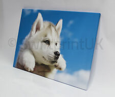 Personalised Your PHOTO/PICTURE Canvas Print & Gallery Wrapped